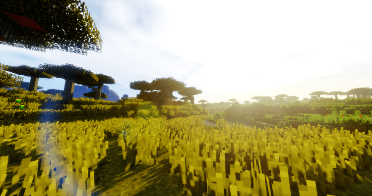 Optifine HD cho Minecraft Shaders