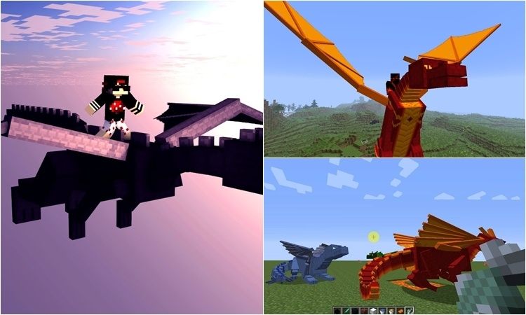 Dragon Mounts Mod 5