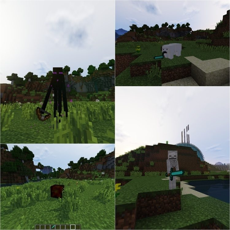 Metamorpth Mod for Minecraft 3
