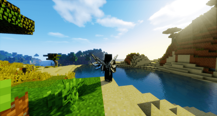 Cosmetic Wings Mod for Minecraft 4