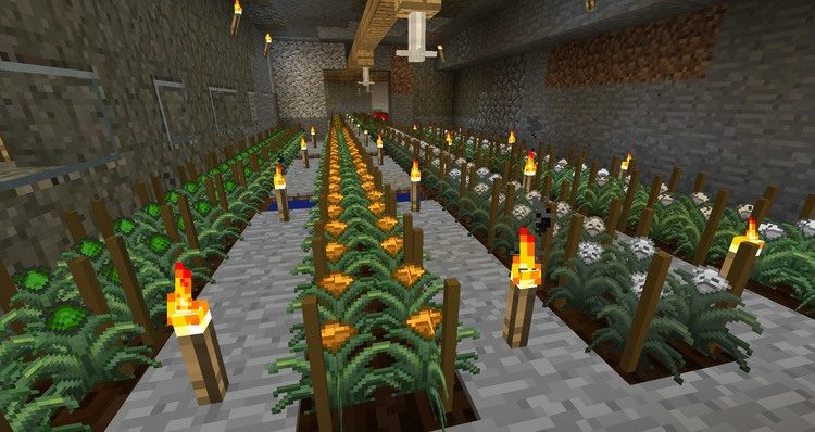magical crops core mod for minecraft 04