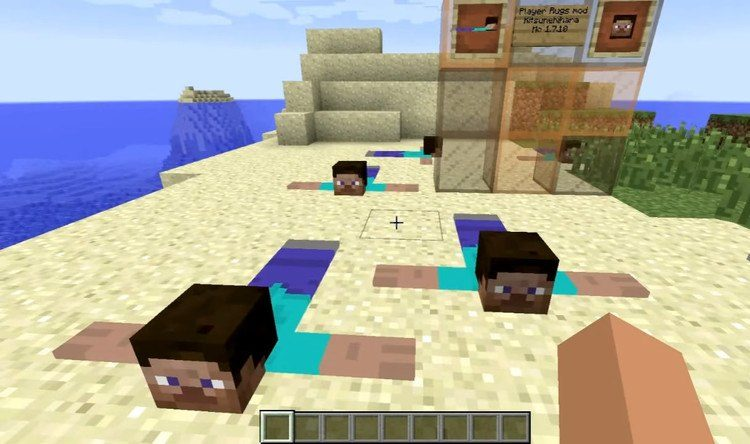Player Rugs Mod for Minecraft 2