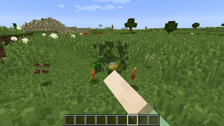 Seed Drop mod for minecraft 01