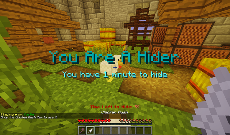 Hide and Seek map cho Minecraft