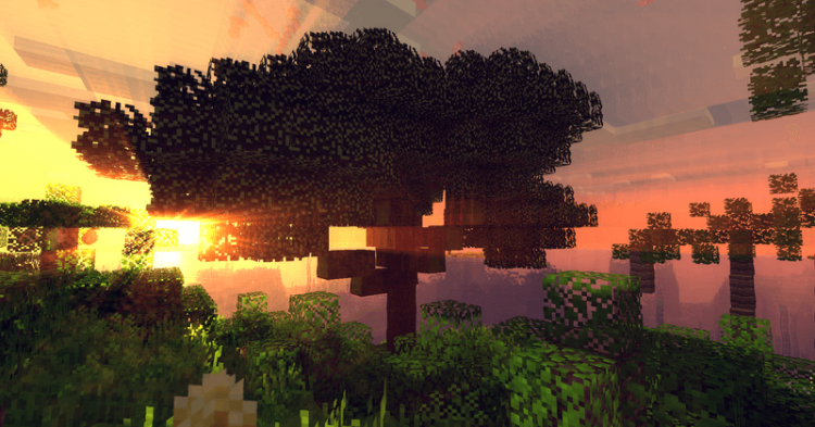Ancient Trees L mod for minecraft 10
