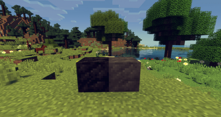 A Block Of Charcoal mod for minecraft 06