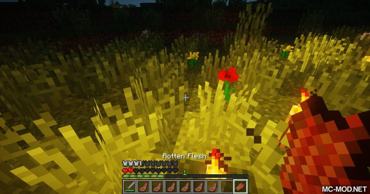 Beta Health mod for Minecraft (5)