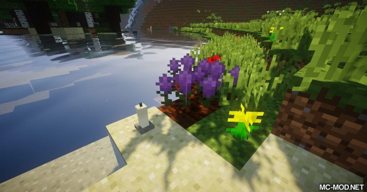 Corvus mod for Minecraft (4)