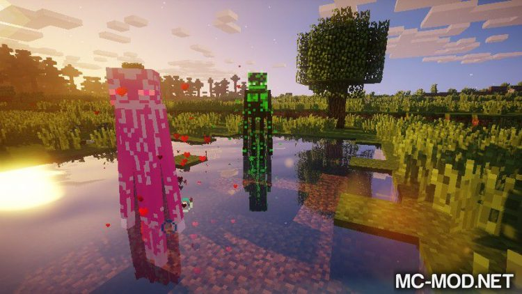 Enderman Evolution mod for Minecraft 03