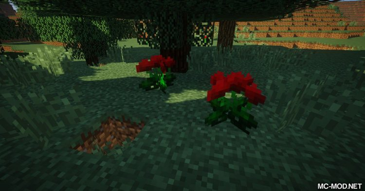 Ferdinand_s Flowers mod for Minecraft 10