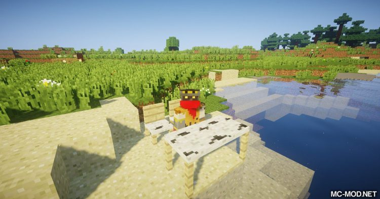 BDM mod for Minecraft (7)