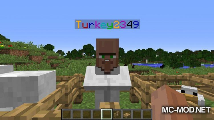 Colored Name Tag mod for minecraft 03