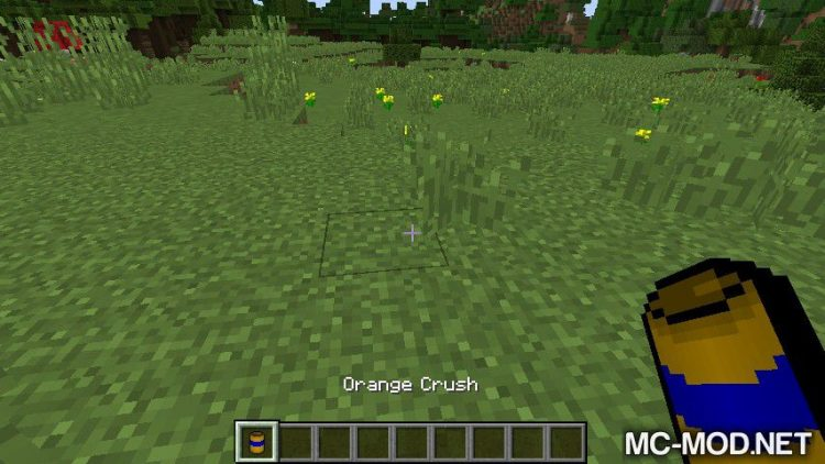 Little Looter mod for minecraft 03