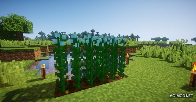 Simple Flax mod for Minecraft (5)