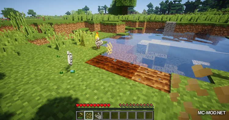 Simple Flax mod for Minecraft (7)