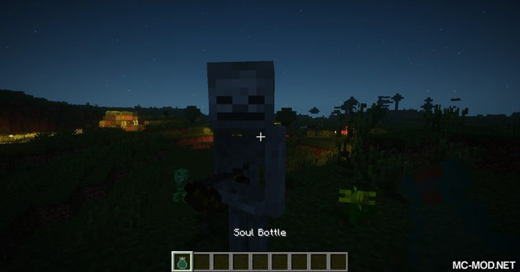SoulBottle mod for Minecraft (4)
