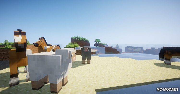 Chunk Survival Generator mod for Minecraft (7)