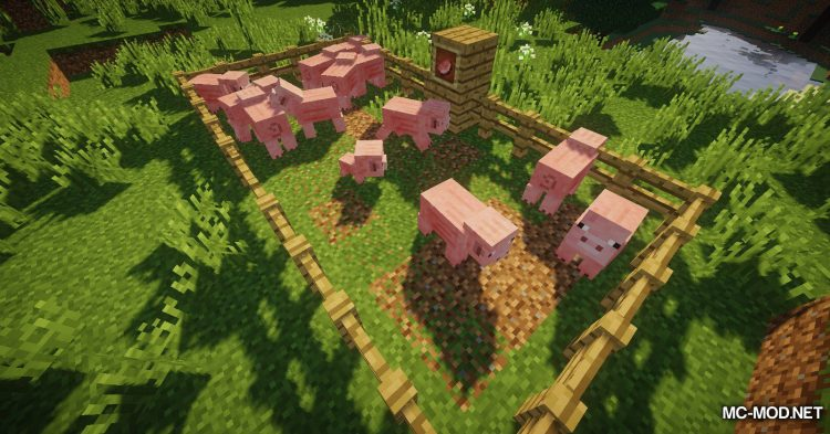 DesirePaths mod for Minecraft (8)