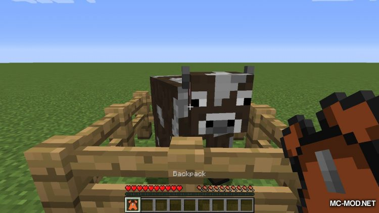 Extended Inventory mod for minecraft 04