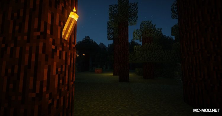 The Middle Torch mod for Minecraft (11)