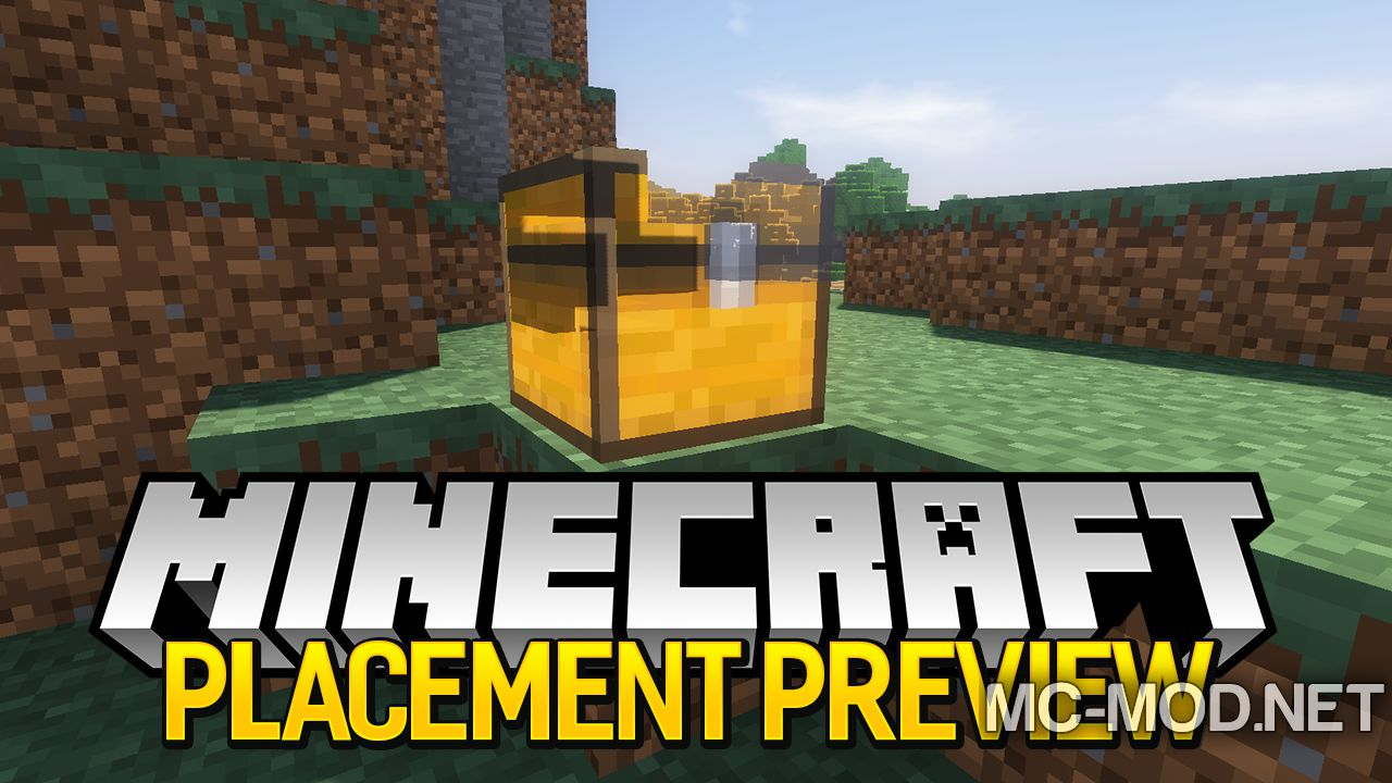 placement review mod for minecraft logo
