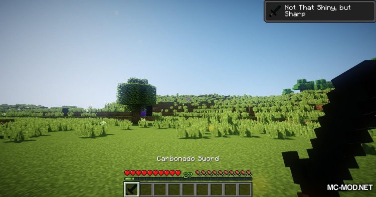 Carbonado Ore mod for Minecraft (9)