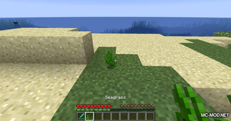 Turtle Shell Drop mod for Minecraft (10)