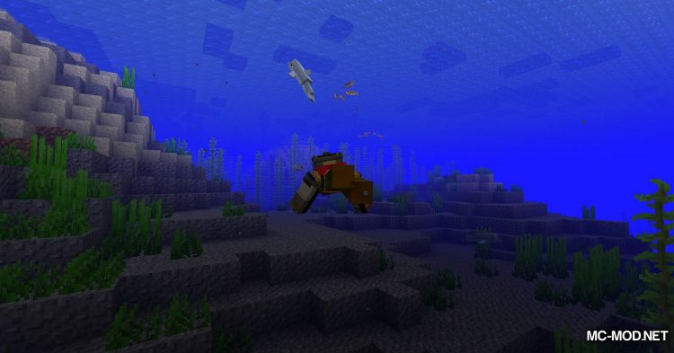 Turtle Shell Drop mod for Minecraft (6)