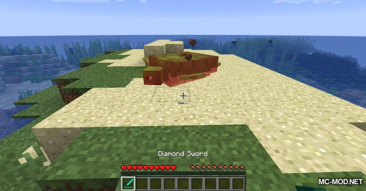 Turtle Shell Drop mod for Minecraft (9)