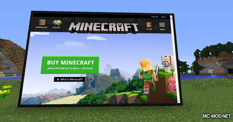 WebDisplays mod for Minecraft (10)