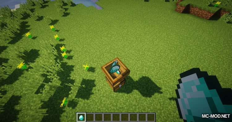 Whopper mod for Minecraft (9)