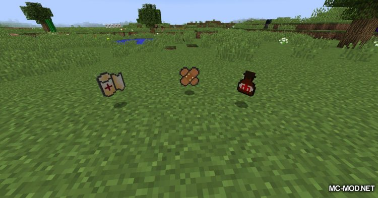 First Aid mod for Minecraft (16)
