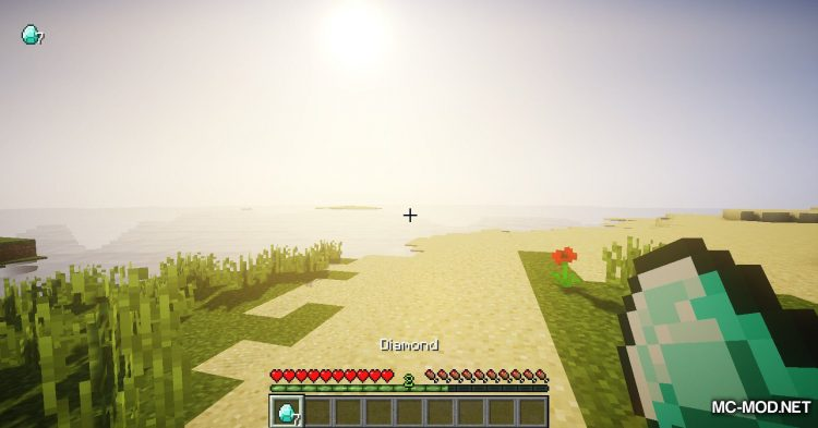 Item Got mod for Minecraft (10)