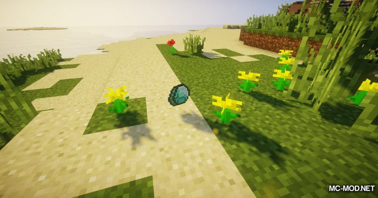 Item Got mod for Minecraft (9)