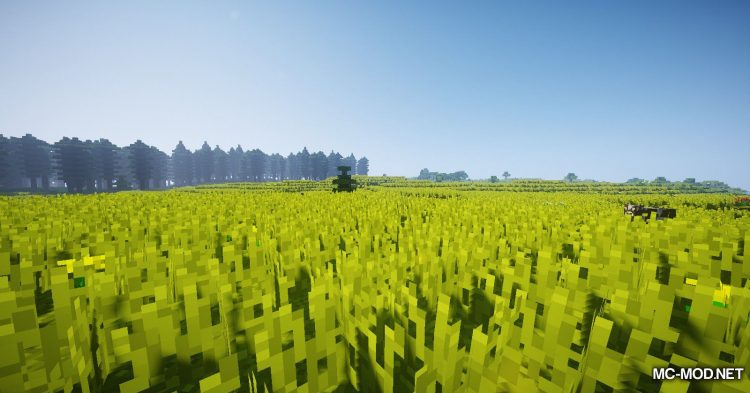 Oh The Biomes You_ll Go mod for Minecraft (5)