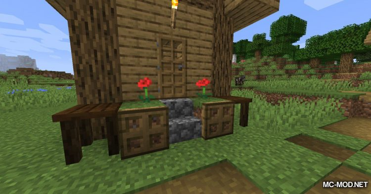 Adorn mod for Minecraft (12)