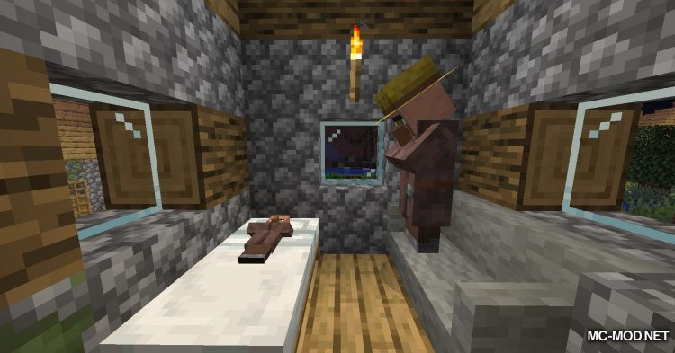 Adorn mod for Minecraft (15)
