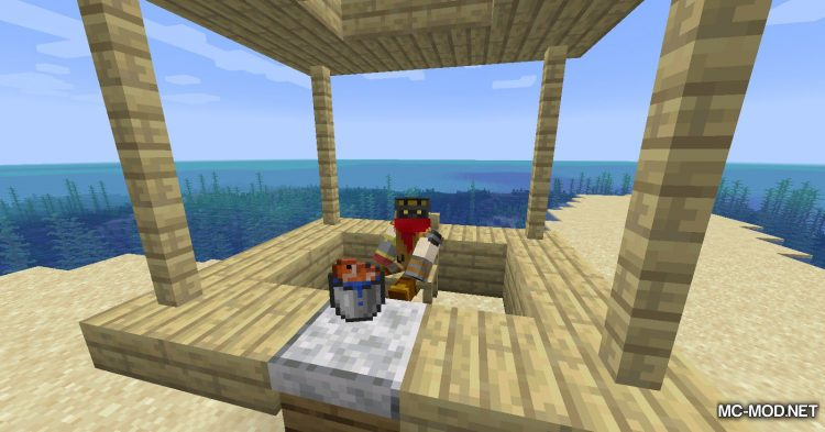 Adorn mod for Minecraft (21)