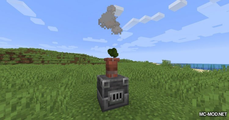 Adorn mod for Minecraft (9)