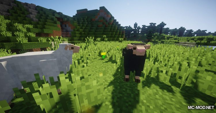 Better Animal Models mod for Minecraft (12)