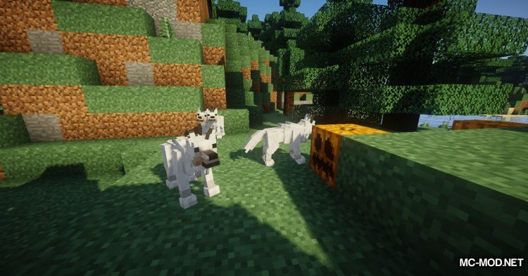 Better Animal Models mod for Minecraft (4)
