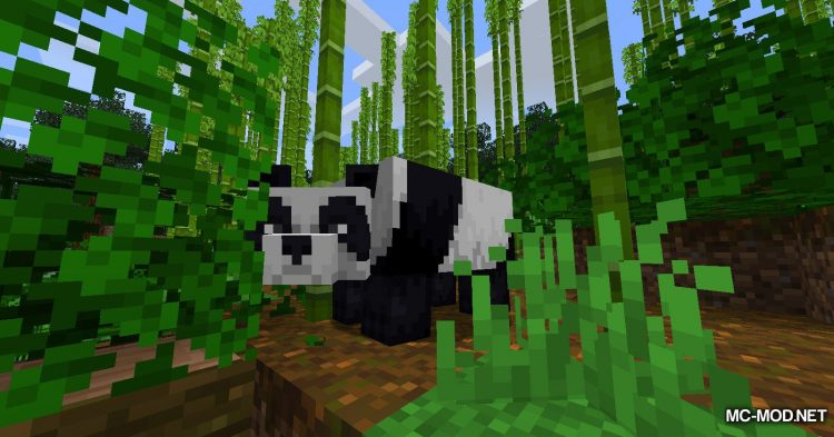 BetterBamboo mod for Minecraft (3)