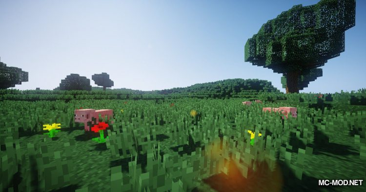 Environs++ mod for Minecraft (13)