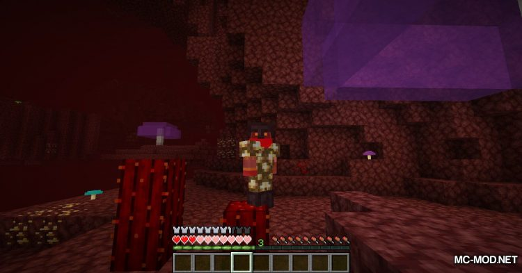 Nether Things mod for Minecraft (18)