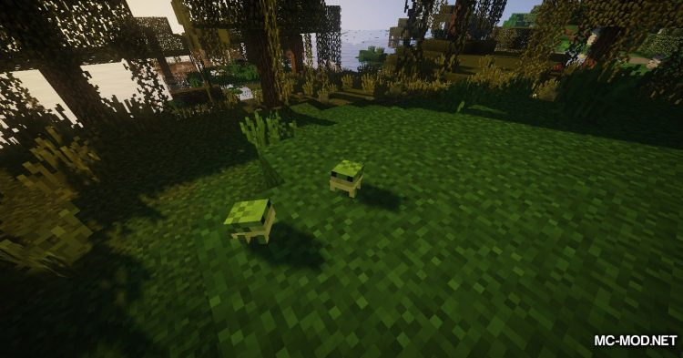 Traitor_s Better Swamplands Mod mod for Minecraft (10)