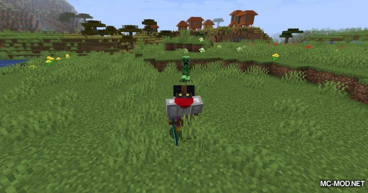 Cosmetic Armor Slots mod for Minecraft (11)