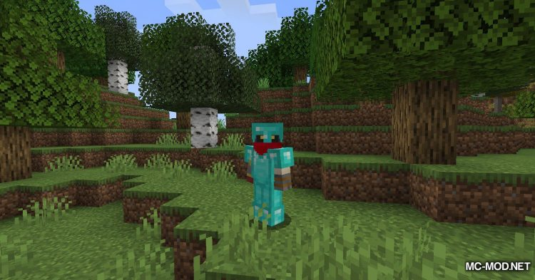 Cosmetic Armor Slots mod for Minecraft (4)