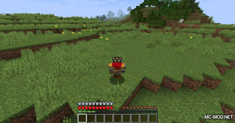 Cosmetic Armor Slots mod for Minecraft (8)