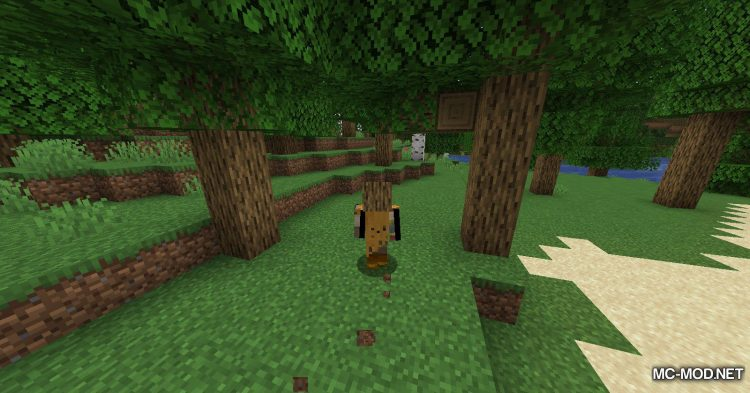 Everything is a Hat mod for Minecraft (5)