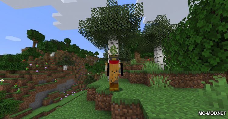 Everything is a Hat mod for Minecraft (6)